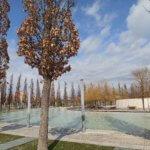 Парк Галицкого Краснодар фото 9